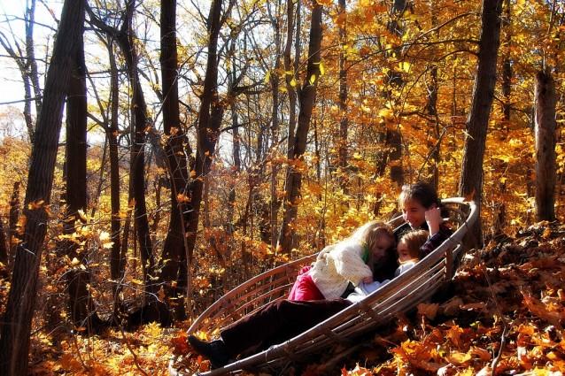 I colori dell 39 autunno nelle foto dei boschi dal mondo for Foto meravigliose del mondo