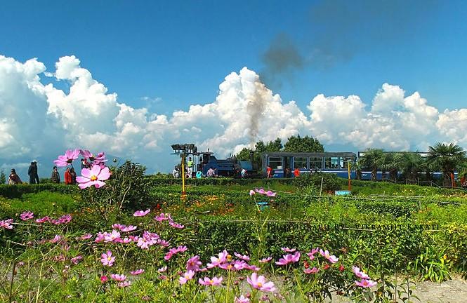 treni Darjeeling_Himalayan_Railway