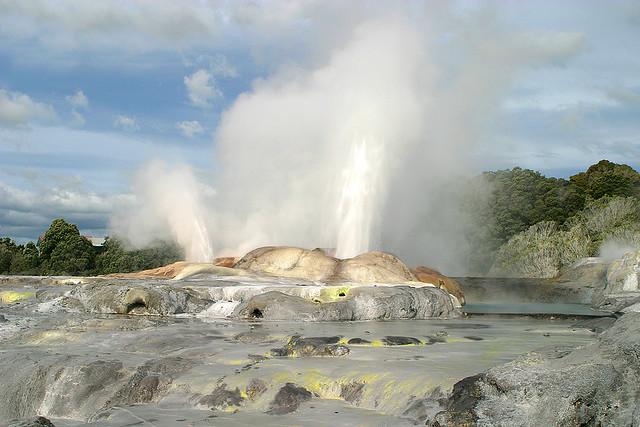 geyser nuova zelanda