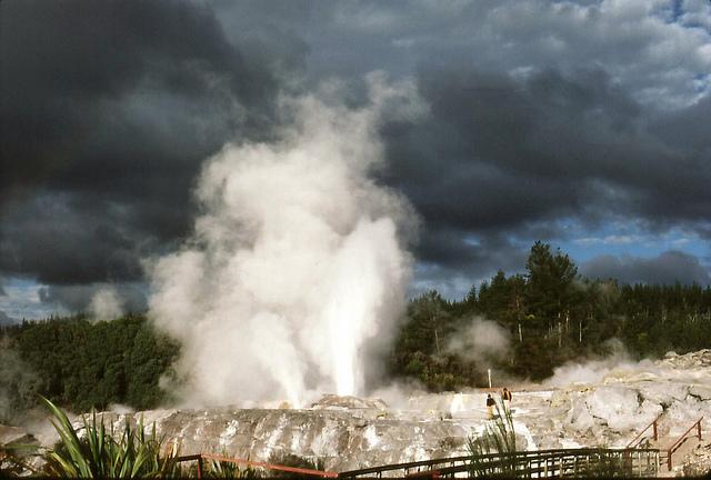 geyser rotorua nuova zelanda