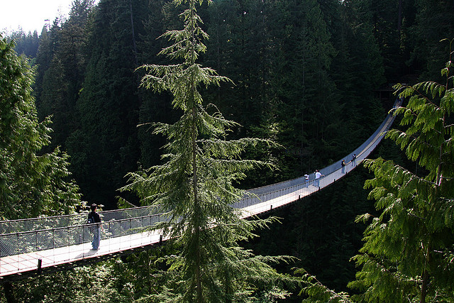 ponti sospesi capilano suspension bridge