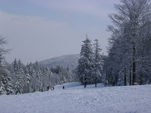 Maribor sci
