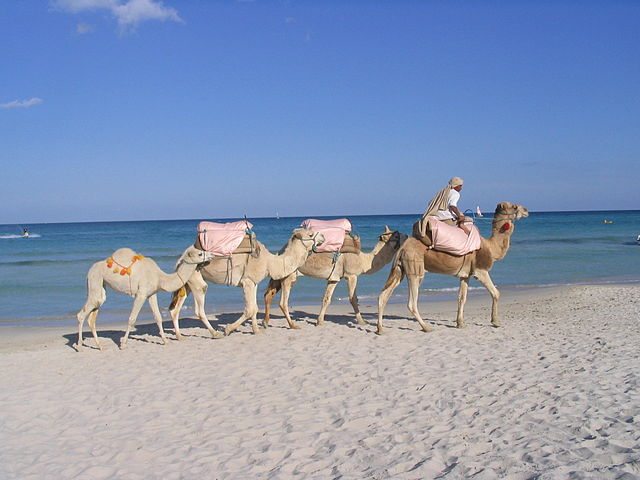 Djerba (Foto di Benoît Prieur)