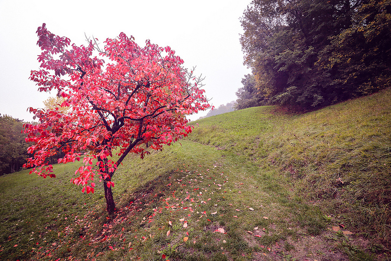 Vacanze a novembre in italia for Vacanze a novembre in italia