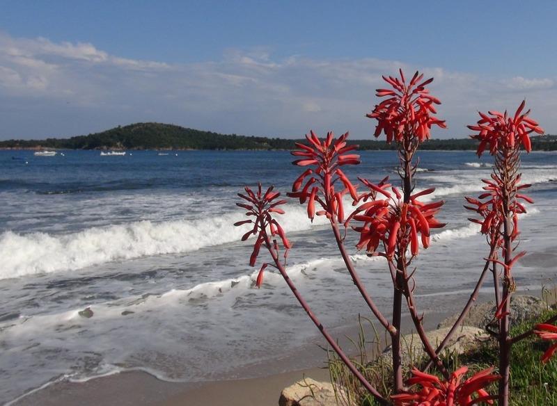 03 maldive destinazione paradiso - 3 5