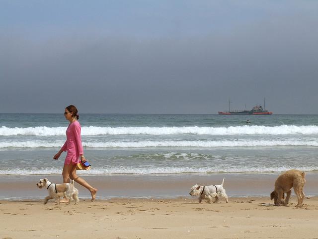 Al mare con i cani (foto di Julio César Cerletti Garcia)