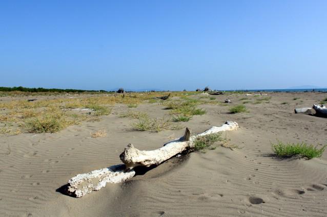 Principina a Mare, spiaggia libera