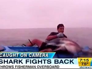 in tv viene mostrato scontro tra uno squalo e un uomo