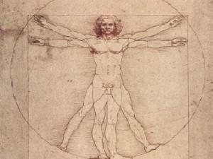 Sì al prestito dell'Uomo vitruviano di Leonardo: il disegno può andare in Francia