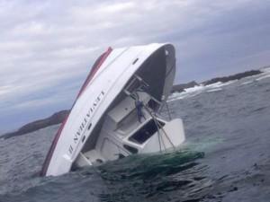 Canada: affonda nave per l'avvistamento delle balene, almeno 5 turisti morti