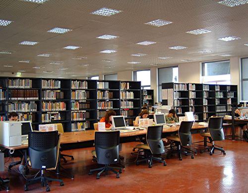 La trasmissione della cultura nell 39 era digitale italiani for Libri internet