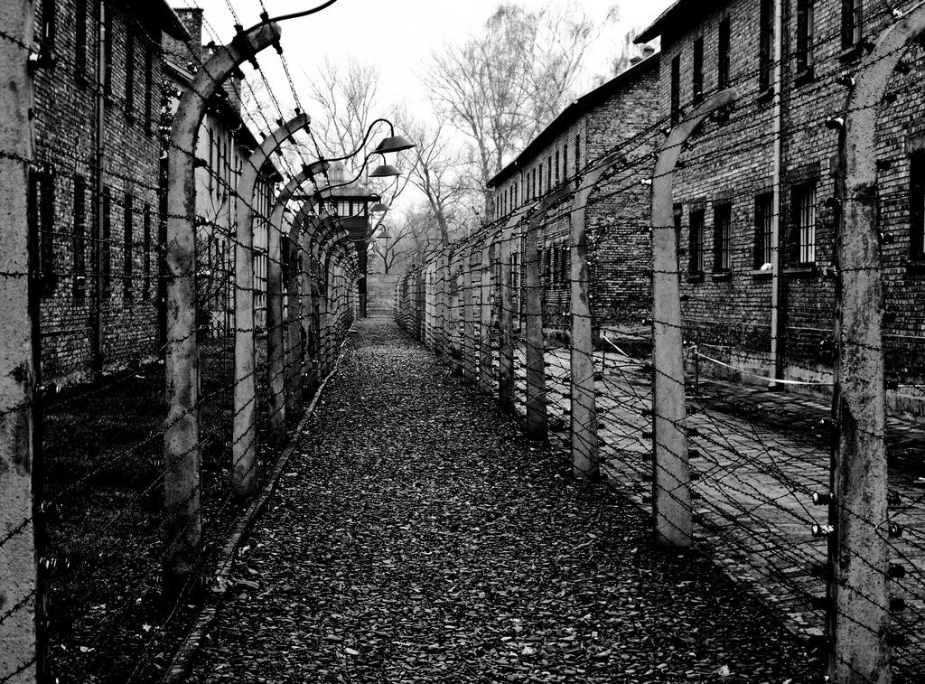 Polonia carcere a chi associa l 39 olocausto al nostro paese for Senatori quanti sono