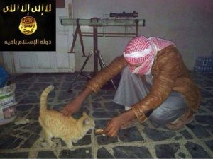 La storia dell'Isis che dichiara guerra anche ai gattini è una bufala