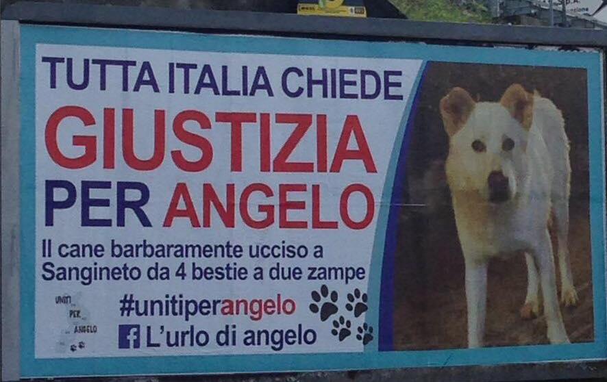 Uno dei manifesta in ricordo del povero Angelo