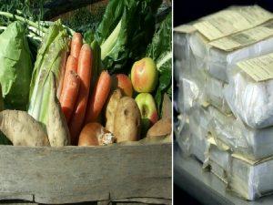 Cocaina dalla Colombia con pesce e frutta. Blitz contro cartello della 'ndrangheta