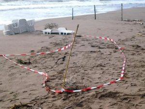 Giallo a San Benedetto del Tronto, scoperti tronco e gambe di uno scheletro umano sulla spiaggia