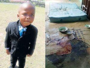 """Bimbo di 4 anni ucciso e mangiato dallo zio cannibale. La nonna: """"Ha bevuto il suo sangue"""""""
