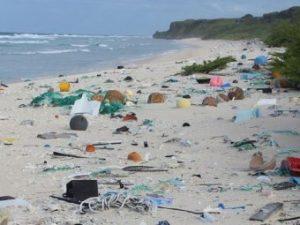 Henderson Island, l'isola più sperduta del mondo: è quella con più alta quantità di plastica