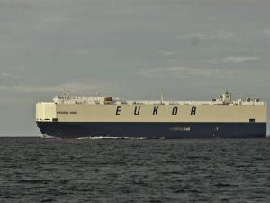 Capitano della nave cade in mare: trovato alla deriva aggrappato a un salvagente