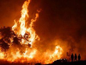 Solo 16 canadair e sette Regioni senza mezzi aerei: perché in Italia contrastare gli incendi è quasi impossibile