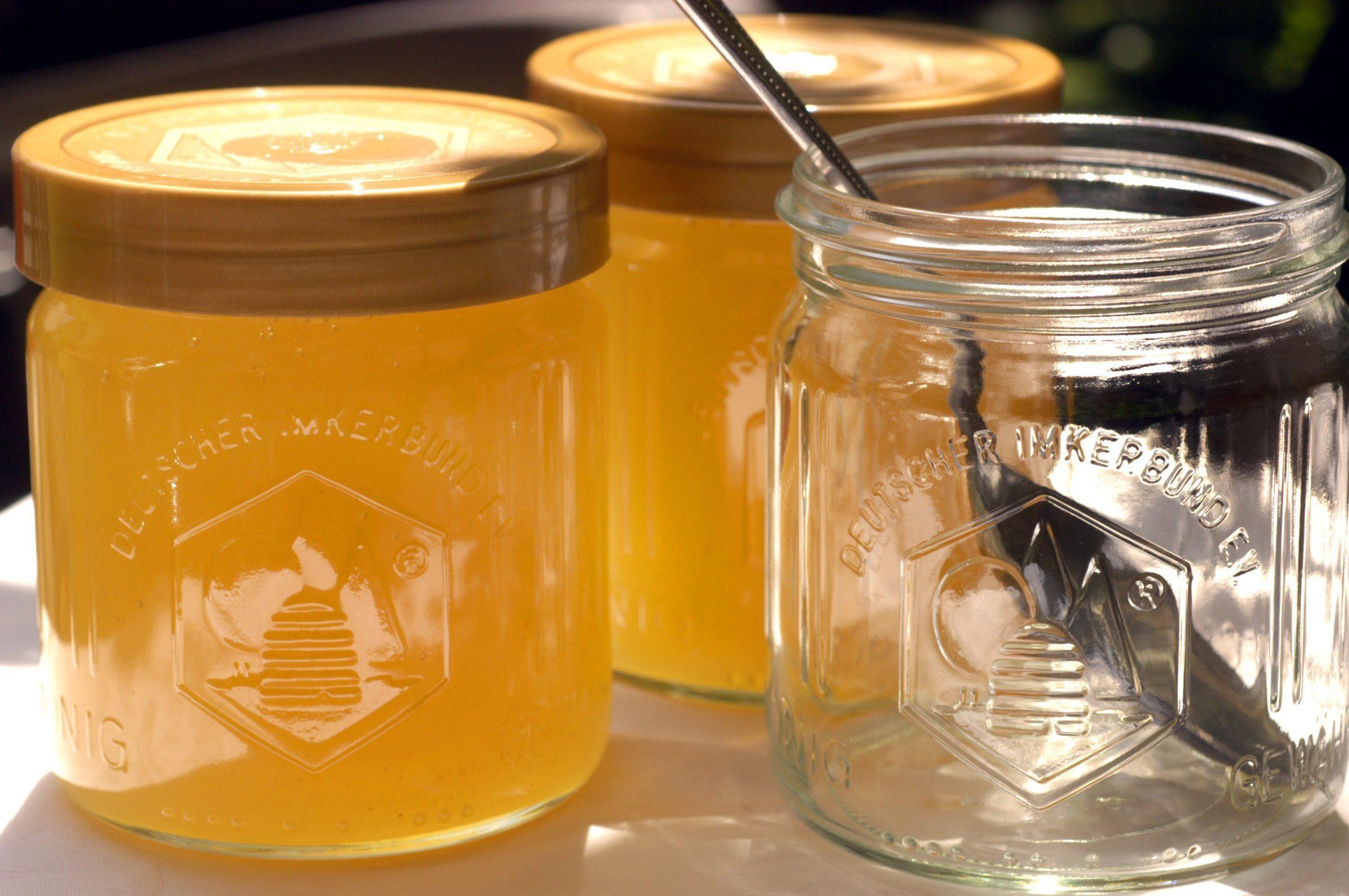 Cucina Per Bambini Miele : Torta di ricotta e miele fidelity cucina