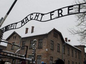 Auschwitz, studente israeliano fa la pipì su un monumento al