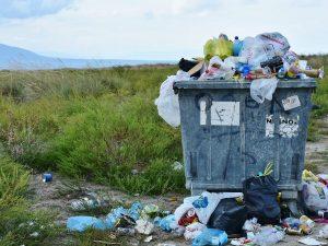 'Scendo l'immondizia' è davvero italiano scorretto?