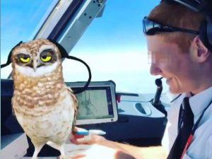 Giocano e pubblicano video su Snapchat durante il volo, nei