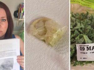 """Mangia l'insalata in busta insieme ai figli: dentro trova un preservativo usato con """"peli pubici neri"""""""