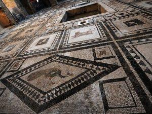 """Pompei, scoperta la Casa dei Delfini: """"Tra gli scavi anche g"""