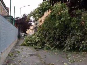 Maltempo |  nubifragi e trombe d'aria  Danni a Asti |  a Vercelli crolla il tetto di una