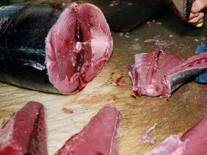 Elevati livelli di Istamina |  tonno Pinne Gialle ritirato dal mercato