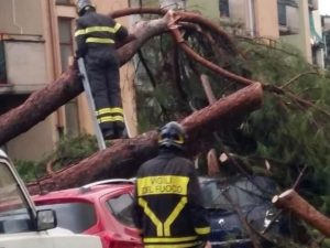 Maltempo sull'Italia: alberi caduti, strade chiuse e blackou