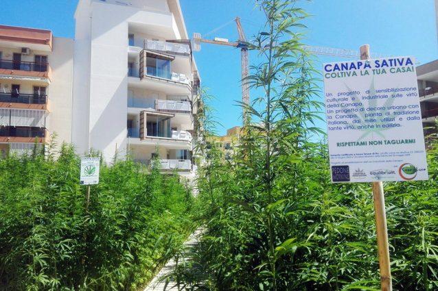 Case di Luce, il condominio fatto di canapa più grande d'Eur