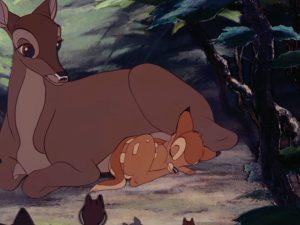 """Usa, la singolare condanna per un bracconiere: guardare continuamente il film """"Bambi"""""""
