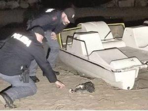 Giallo a San Benedetto del Tronto: passante trova resti uman