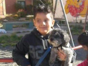 """Il cane si perde, bimbo autistico offre la sua bici come ricompensa: """"Tito mi manca"""""""