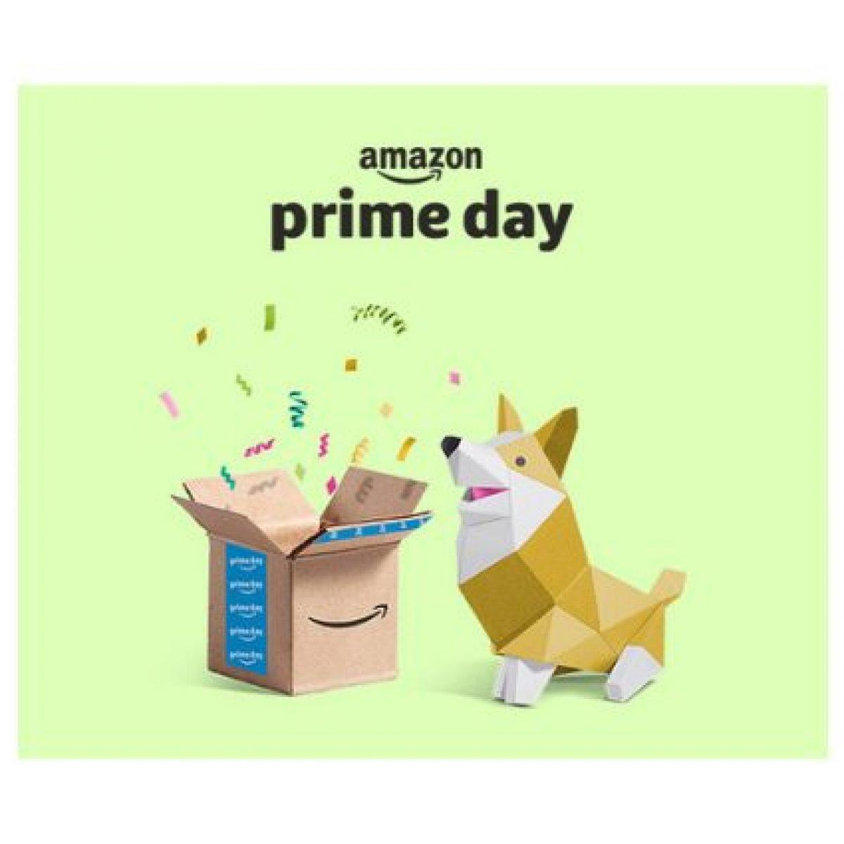 891d99b15ec374 Prime Day 2019: come funzionano le Offerte Lampo