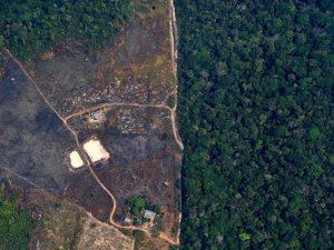 Incendi Amazzonia: è emergenza internazionale, Bolsonaro man