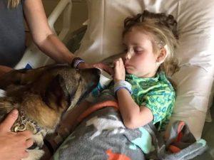 Addio a Emma: è morta la bimba malata di tumore che riceveva