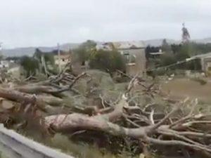 Tromba d'aria ad Orbetello distrugge la riserva di Duna Feni