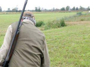Rimini, 81enne cade e si spara col fucile all'addome: morto.