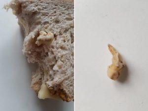 """Basilea, trova un dente nel pane alle noci: """"Una cosa del ge"""