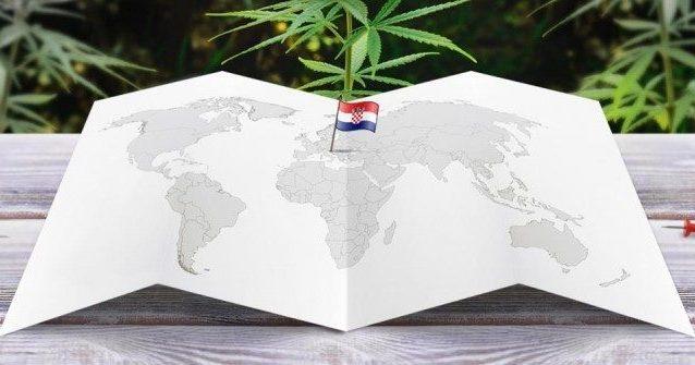 """Cannabis, la Croazia verso la legalizzazione: """"Fondamentale contro i ..."""