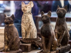 Egitto, scoperti il sarcofago di un leopardo e pinoli import