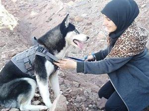 """Afghanistan, uccidono il suo husky mentre lo porta a passeggio: """"Una donna ..."""