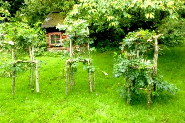 come creare i propri arredi ecco gli alberi a forma di mobili