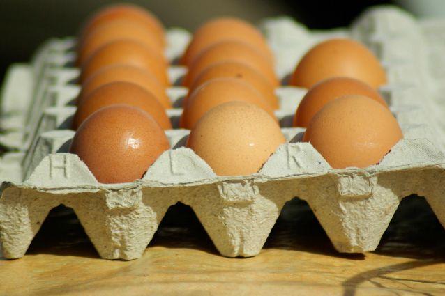 Soluzioni creative: come riciclare i cartoni delle uova