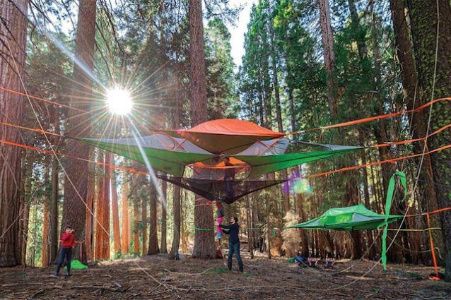Campeggio 2.0: ecco la tenda per dormire sugli alberi