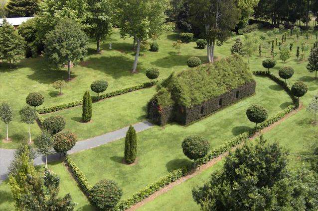 Tree Church: la prima chiesa al mondo fatta solo di alberi